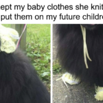 Millennials Are Increasingly Choosing Pets Over Parenthood, These 24 Posts Hilariously Explain Why