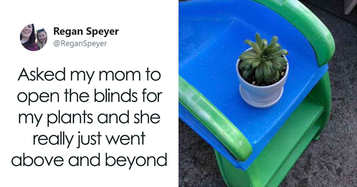 After This Woman Asked Her Mom To Take Care Of Her Plants, Her Mom Pretended To Be A 'Grandplantrent'