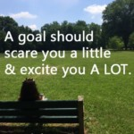 """A goal should scare you a little & excite you A LOT."" ~Joe Vital"