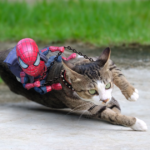 Artist Puts Baby Spiderman And Cats In The Funniest Scenarios (49 Pics)