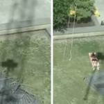 Crane Operator Annoys Sunbather By Casting A Shadow On Him