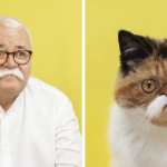 11 Cat-Human Pairs That Look Just Like Each Other By Photographer Gerrard Gethings
