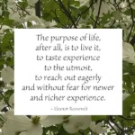 the purpose of life quote