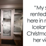 "88 People Whose Christmas Was As ""Good"" As The Year 2020"