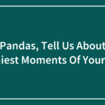 Hey Pandas, Tell Us About The Funniest Moments Of Your Cats